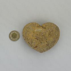 Herz Aare
